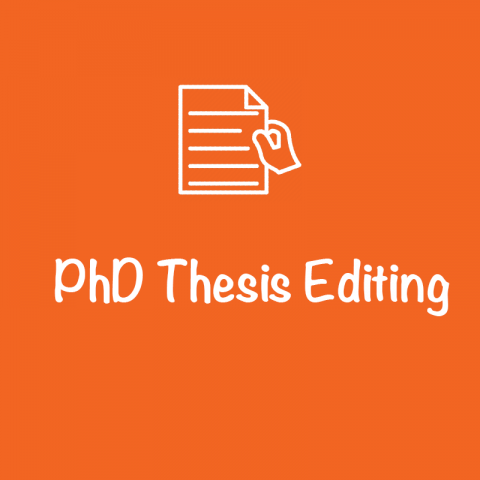 best thesis editing services
